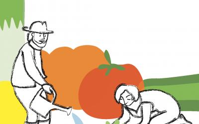 Motive für die Solidarische Landwirtschaft Dalborn